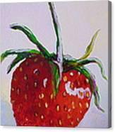 Single Strawberry Canvas Print