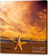 Starfish On The Beach At Sunset Canvas Print