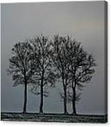 4 Trees In A Winters Landscape Canvas Print