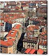 View Of Turin Canvas Print
