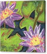 Water Lilies I Canvas Print