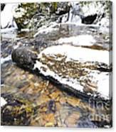White Oak Run In Winter Canvas Print