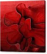 Lumbar Spine Canvas Print
