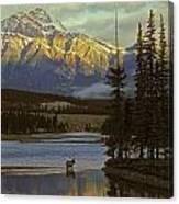 4028a, Evening Skyline, Montreal, Qc Canvas Print