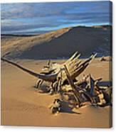 Silver Lake Sand Dunes Canvas Print