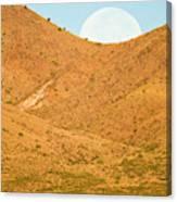 Usa, New Mexico, Bosque Del Apache Canvas Print