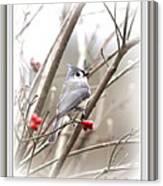 4817-003 - Fb Canvas Print