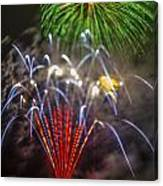 4th Of July Through The Lens Baby Canvas Print