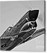 A Curtiss P-40e Warhawk In Flight Canvas Print