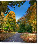 Alley With Falling Leaves In Fall Park Canvas Print