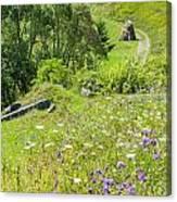 Carpathians Landscape Canvas Print