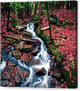 Chesterfield Gorge New Hampshire Canvas Print