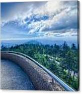 Clingmans Dome - Great Smoky Mountains National Park Canvas Print