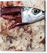 Fish Bait Canvas Print
