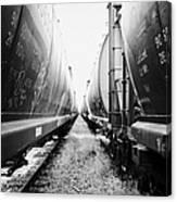 freight grain trucks on former canadian pacific railway now great sandhills railway through leader S Canvas Print