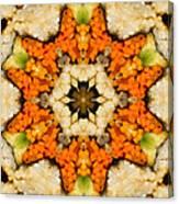 Kaleidoscope Vegetable Sushi Canvas Print