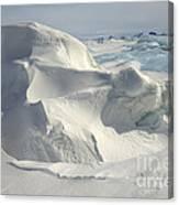 Pack Ice, Antarctica Canvas Print