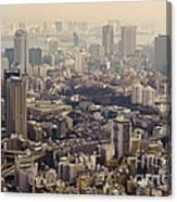 Tokyo, Japan Canvas Print