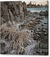 Tufa Formations, Mono Lake, Ca Canvas Print