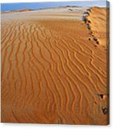 Silver Lake Sand Dunes Canvas Print