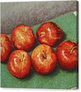 6 Apples Washed And Waiting Canvas Print