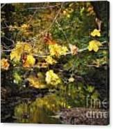 Autumn 2013 Canvas Print