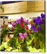 Beautiful Flowers Inside The Changi Airport In Singapore Canvas Print