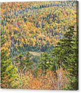 Colorful Fall Forest Near Rangeley Maine Canvas Print