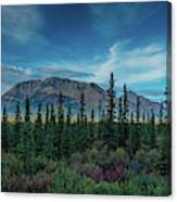 Denali Highway, Route 8, Offers Views Canvas Print