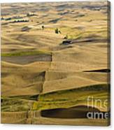 Farm Fields Canvas Print