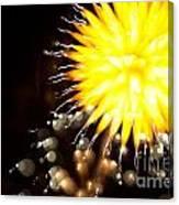 Fireworks Art Canvas Print