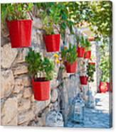 Flower Pots 2 Canvas Print