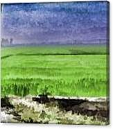 Green Fields With Birds Canvas Print