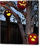 Pumpkin Escape Over Fence Canvas Print