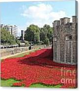 Remembrance Poppies At The Tower Of London Canvas Print