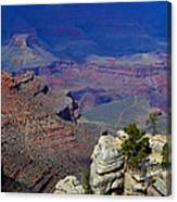 South Rim Of The Grand Canyon Canvas Print