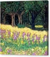 Texas Gold Canvas Print