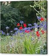 Beth Chatto Gardens Canvas Print