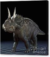 Dinosaur Diceratops Canvas Print