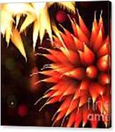 Fireworks Art Canvas Print