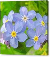 Forget-me-not Canvas Print