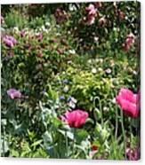 Monets Garden - Giverney - France Canvas Print