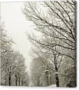 Snow Covered Road And Trees After Winter Storm Canvas Print