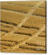 Tracks In Field Canvas Print