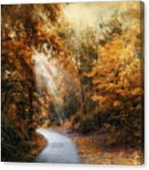 Late Autumn Trail Canvas Print