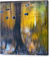 8 Ducks On Pond Canvas Print