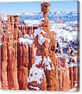 Eroded Rocks In A Canyon, Bryce Canyon Canvas Print