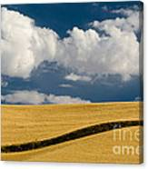 Farm Field Canvas Print