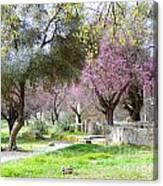 Olympia Greece Canvas Print