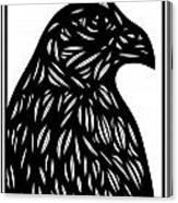 Bruh Eagle Hawk Black And White Canvas Print